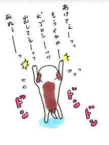 Furo2